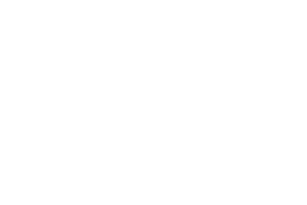 logo for D'Addario Woodwinds
